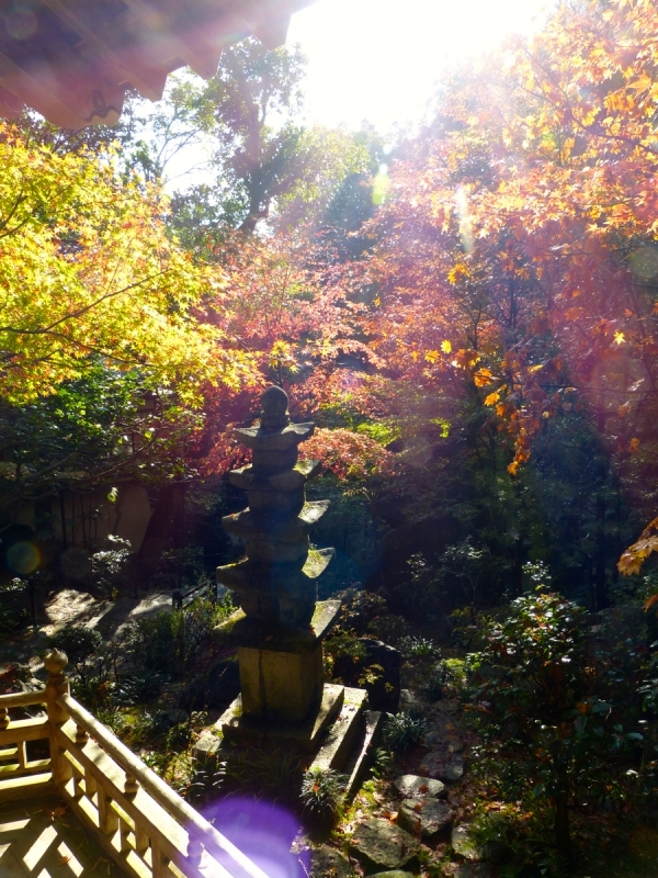 Autumn Leaves at Mitaki Temple - 18