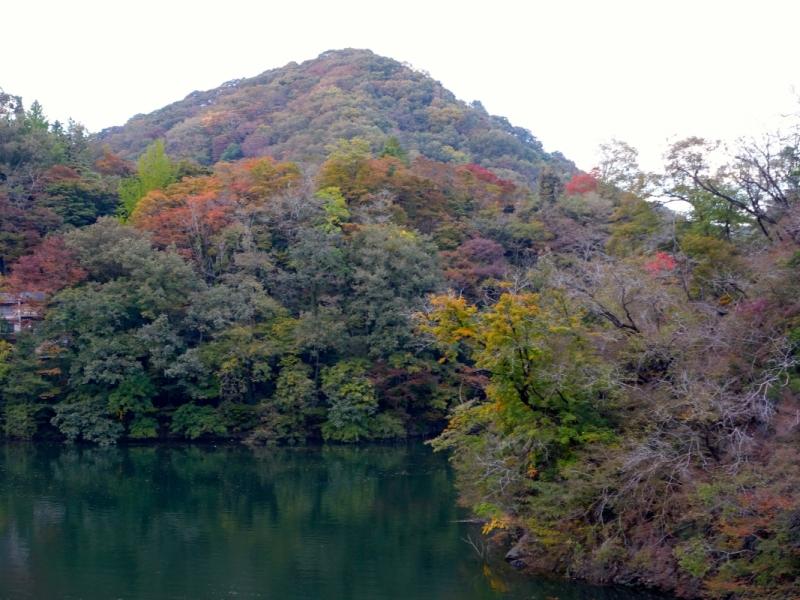 Leaves turning at Shinryuko Lake