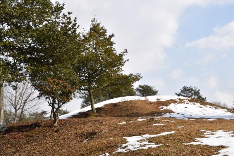 Miyoshi Fudoki-no-oka kofun burial mound