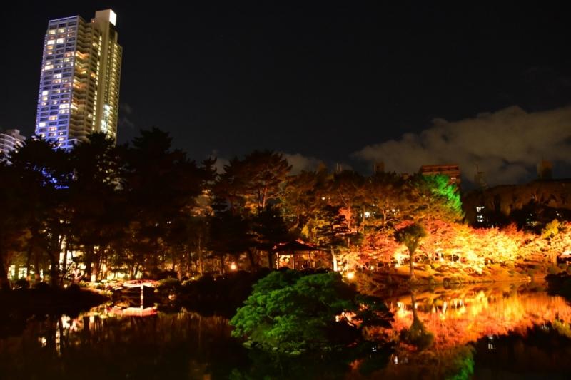 Autumn Illuminations at Shukkeien Garden - 3