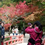 momiji-bashi-bridge-miyajima-in-early-autumn-03