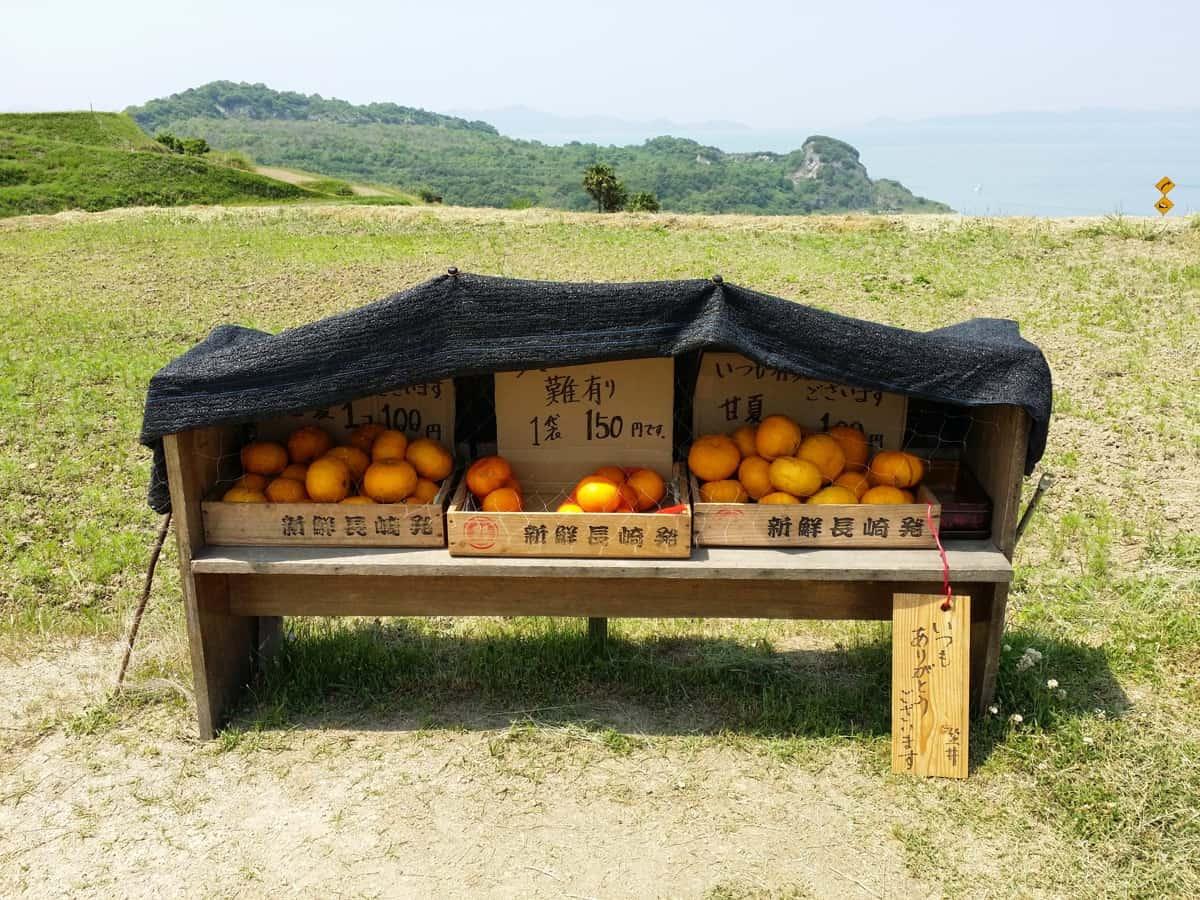 Self-service oranges on Teshima © David Billa